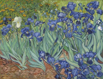 Van-Gough-Irises.jpg